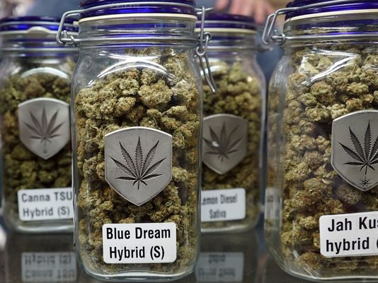 Soon Governments May Want You to Get High: Legal pot may soon be at a store near you